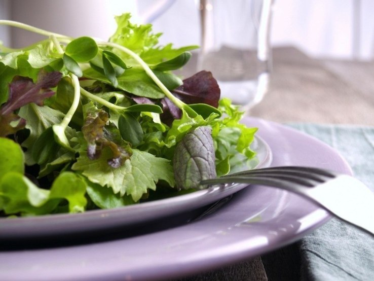 Los beneficios para la salud de Microgreens - DIY Wellness