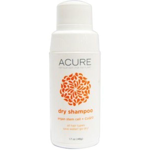 Acure Shampoo Whole Foods