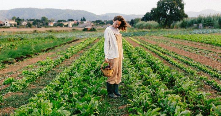 Your Food Isn't As Nourishing As You Think: An Award-Winning Food Journalist Explains