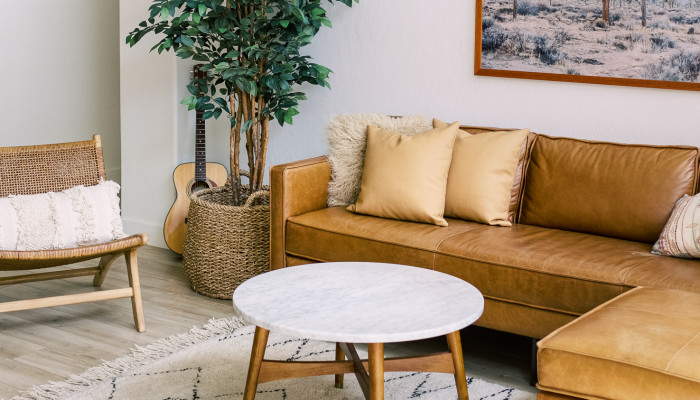 Want A Hypoallergenic Home? Here Are 3 Things To Consider Tossing