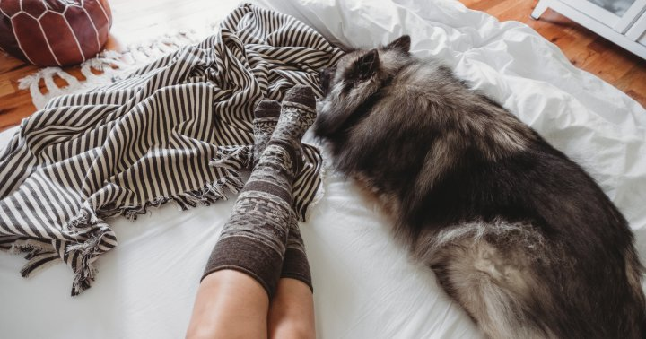 A Case For Wearing Socks To Bed, From The Sleep Doctor