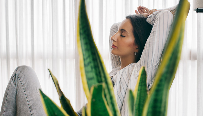 10 Simple Remedies That Can Help You Combat Stress Naturally