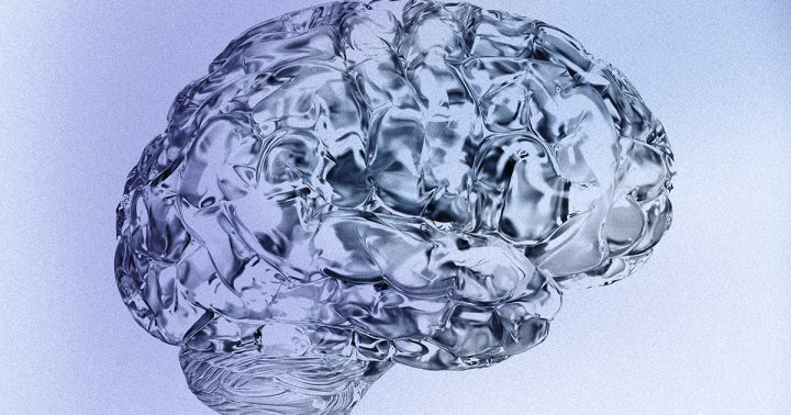 A Neuroanatomist On The 4 Ways Your Brain Operates (And How To Tap Into Each)