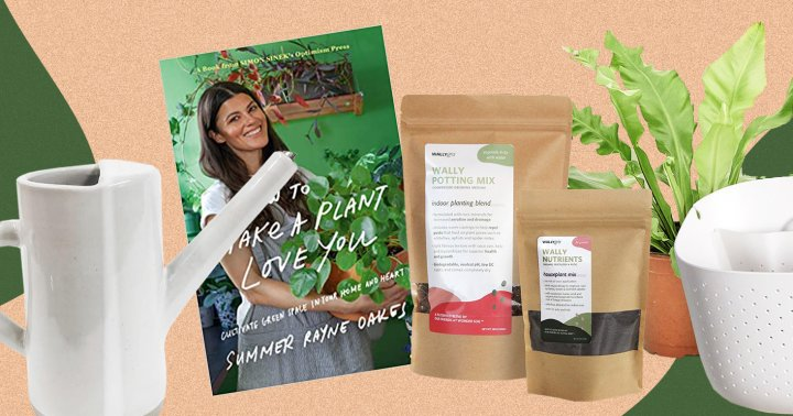 Green Gifts: 36 Plants, Tools & Books Every Houseplant Lover Needs