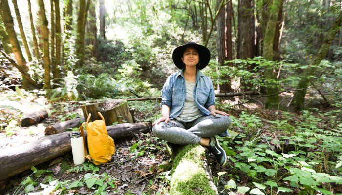 Confused Out? Right here's How To Use Nature To Chill out Your Means To Bliss