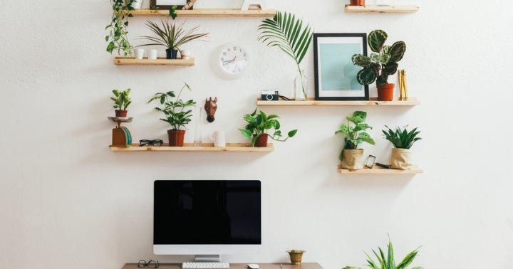 How To Declutter Sentimental Items Mindbodygreen