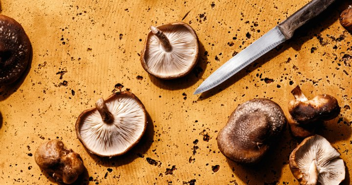 Make These Fermented Mushrooms & Add A Gut-Healthy Topping To Any Dish