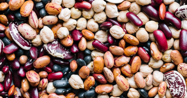 This Is Dan Buettner's Favorite Type Of Bean For Longevity, In Case You're Curious