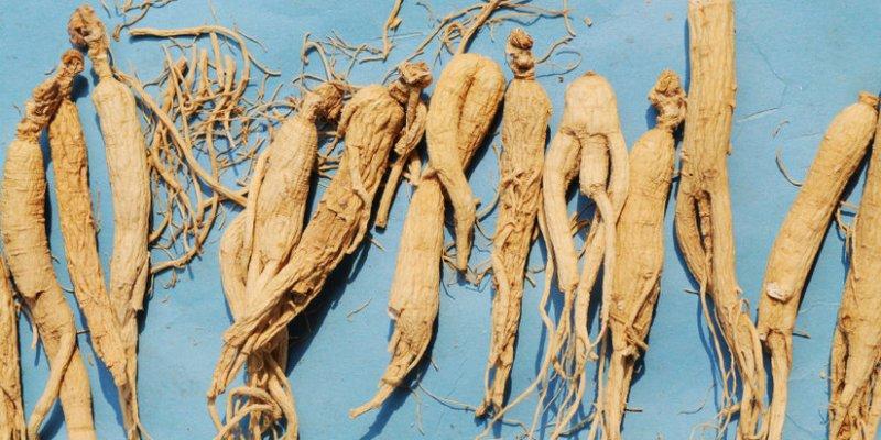 7 Adaptogen Herbs To Lower Your Cortisol