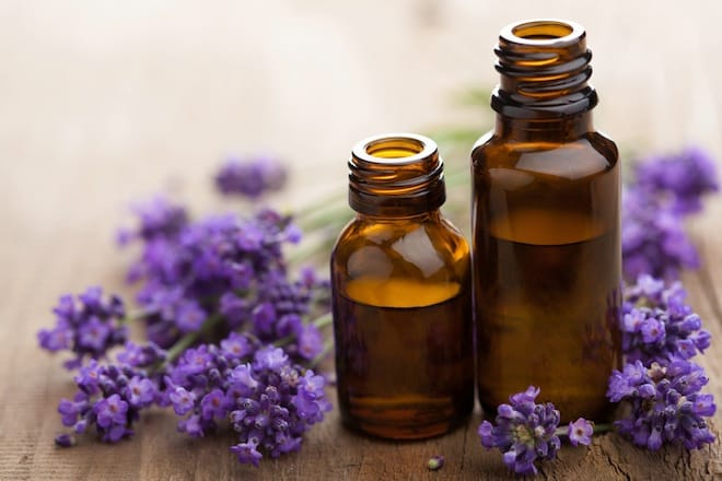 Image result for lavender essential oil