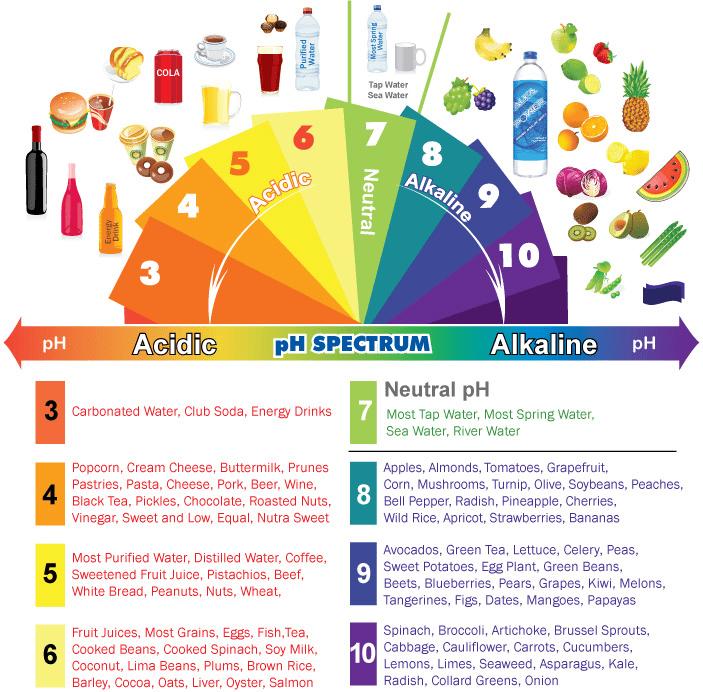Alkaline Acidic Foods Chart The pH Spectrum mindbodygreen – Ph Chart