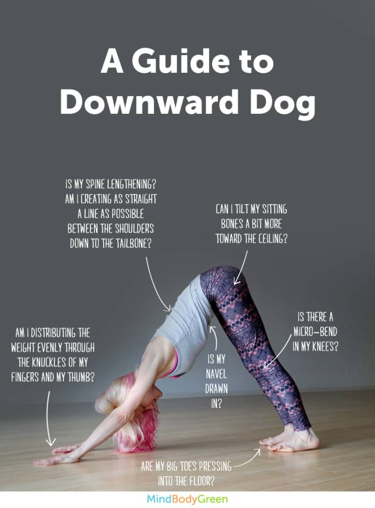 How To Do Downward Dog Cute Infographic Mindbodygreen