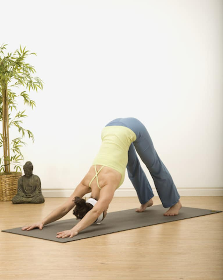 Downward Dog Pose Adho Mukha Svanasana