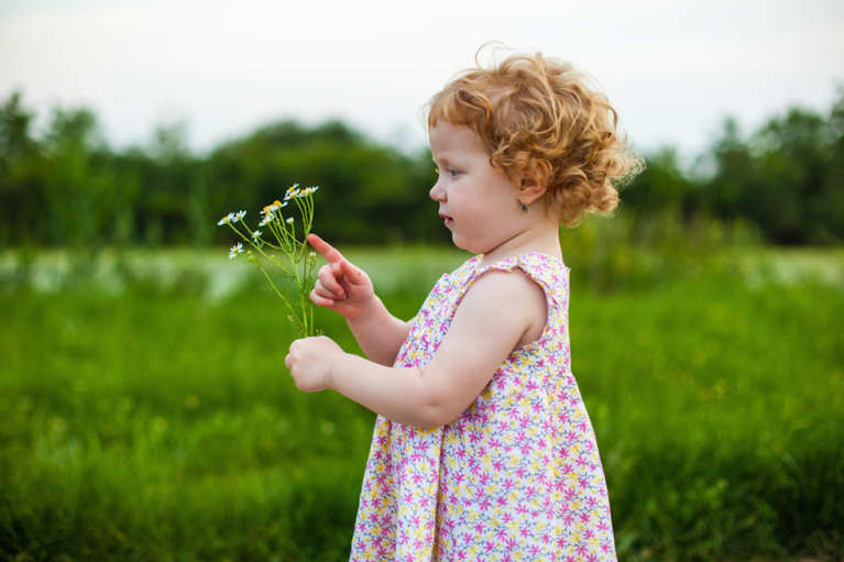 The Essential Herbal First-Aid Kit Every Parent Should Own