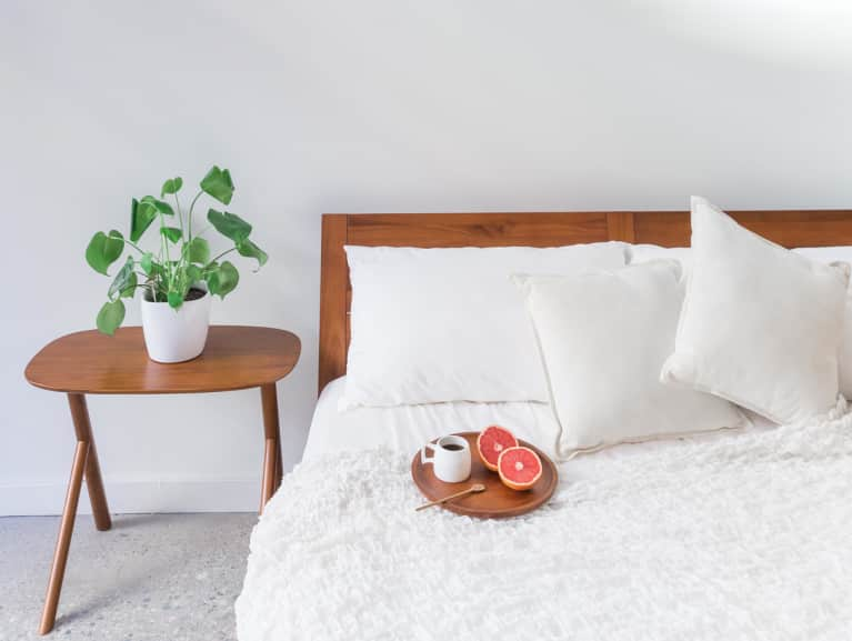 Bedrooms Should Be Plant Free Zones According To Feng Shui