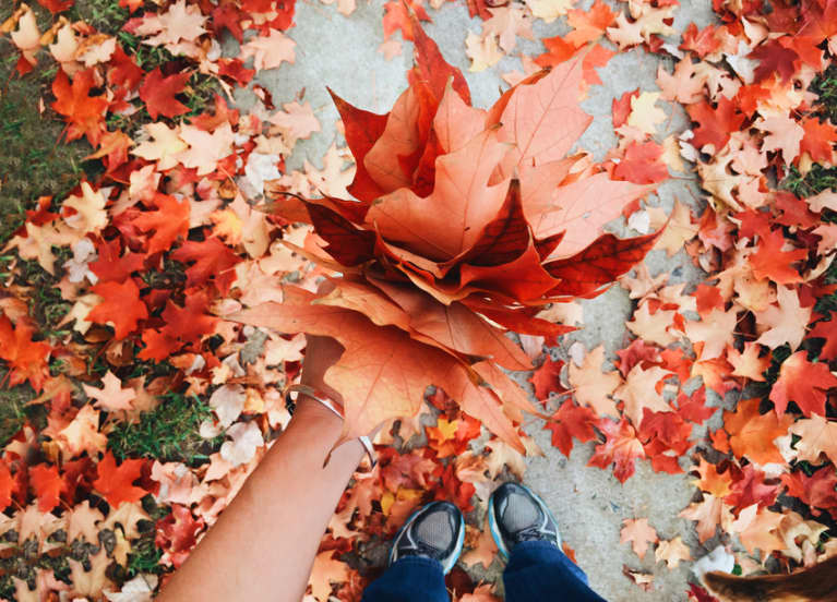 Fall foliage guide 2017 mindbodygreen for When will the leaves start changing 2017