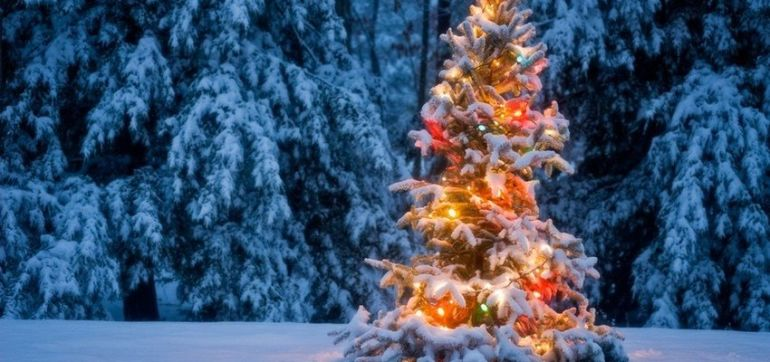 7 Tips For A Stress-Free Holiday Hero Image