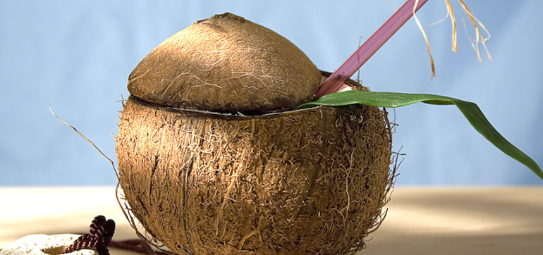 10 Things You Don't Know About Coconuts Hero Image