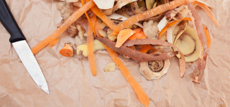 Seattle Will Start Fining People Who Throw Away Food Hero Image