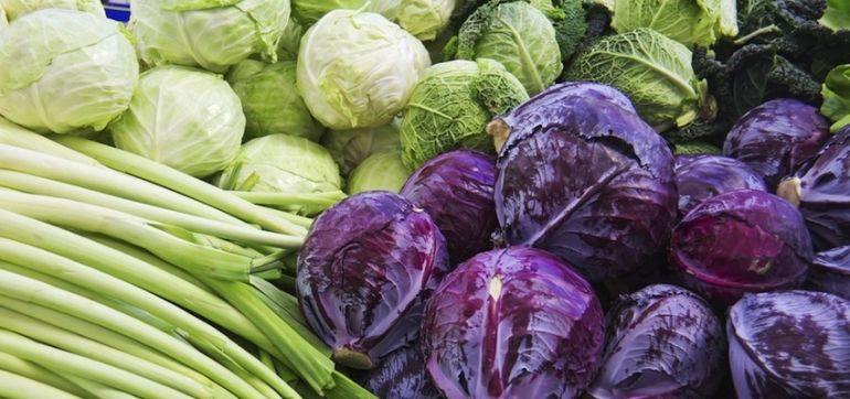 10 Foods To Fight Candida Hero Image