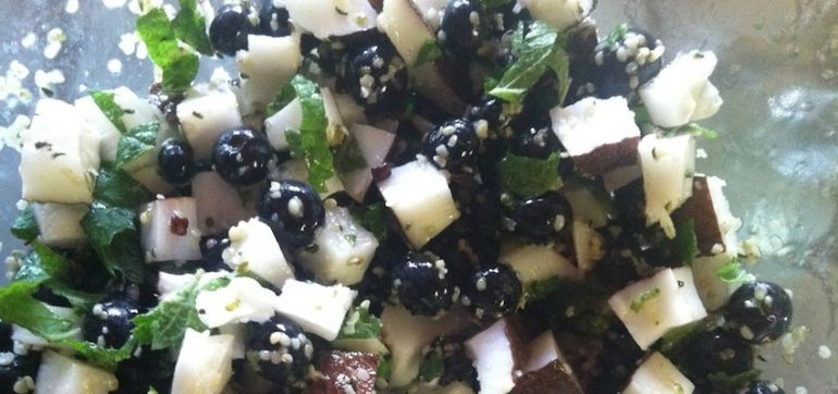 Vegan Recipe: Fresh Coconut & Blueberry Salad Hero Image
