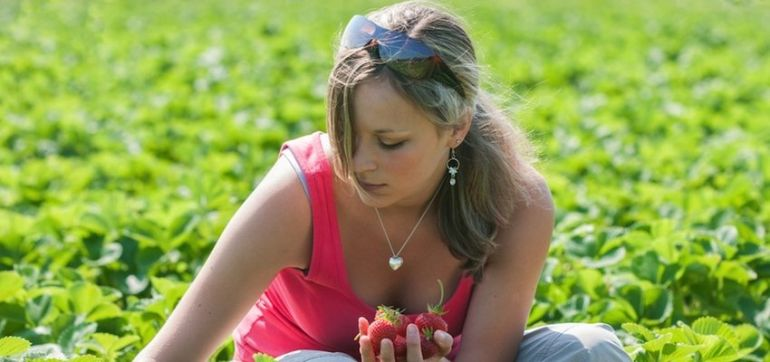 Top 5 Foods To Forage For Summer Hero Image