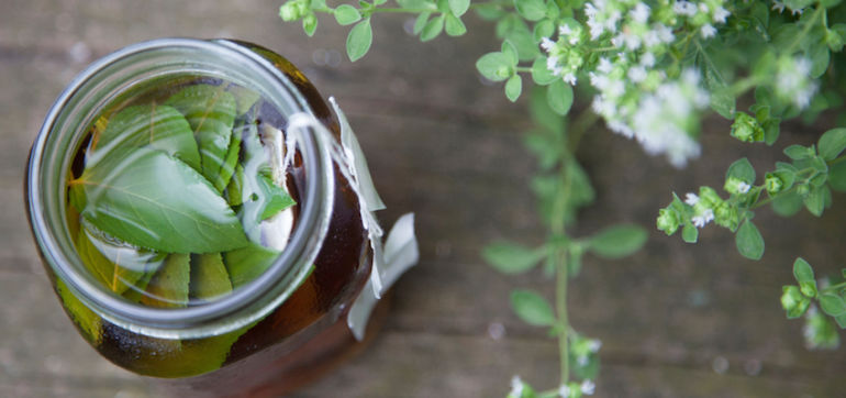 4 Holistic Gut-Healing Remedies For Your Home Apothecary Hero Image