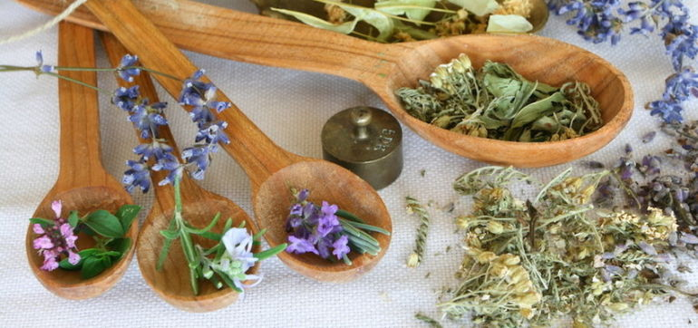 3 Ancient Herbs To Reduce Stress & Anxiety Hero Image