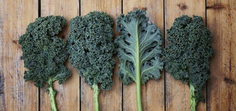 10 Ways To Celebrate National Kale Day Hero Image