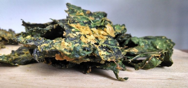 Kale Chips With Nutritional Yeast Hero Image