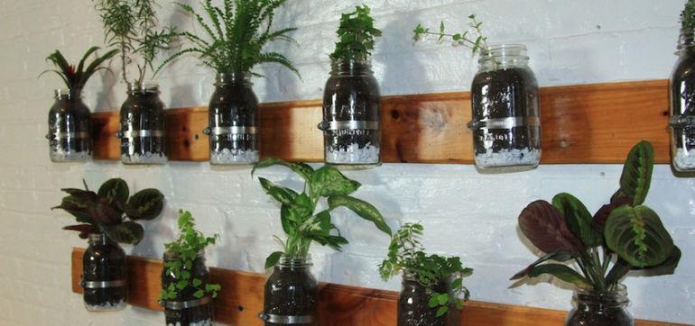 DIY: Build A Mason Jar Herb Garden Hero Image