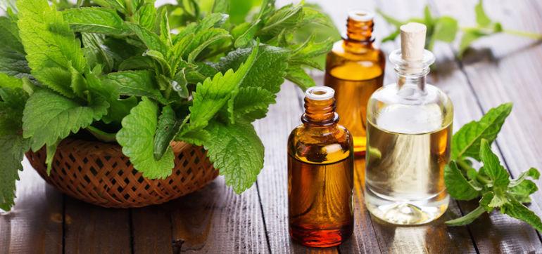 3 Healing Essential Oils That Belong In Every Medicine Cabinet Hero Image