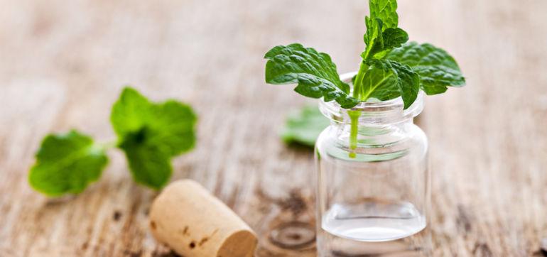 5 Detoxifying Essential Oils To Boost Immunity Hero Image