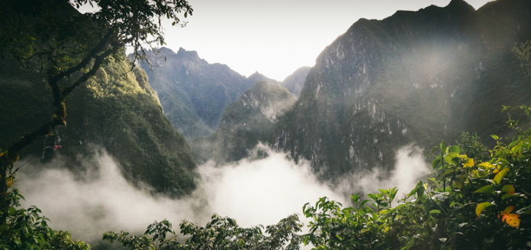 Why I Quit My Job After I Tried Ayahuasca In Peru Hero Image