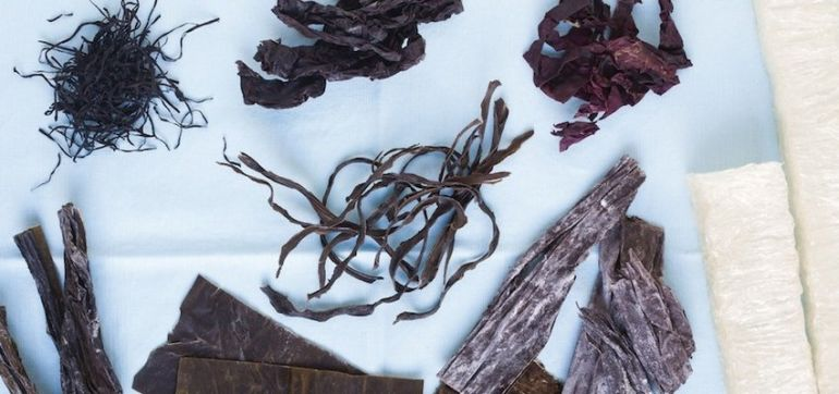 All You Need To Know About Eating Sea Vegetables Hero Image