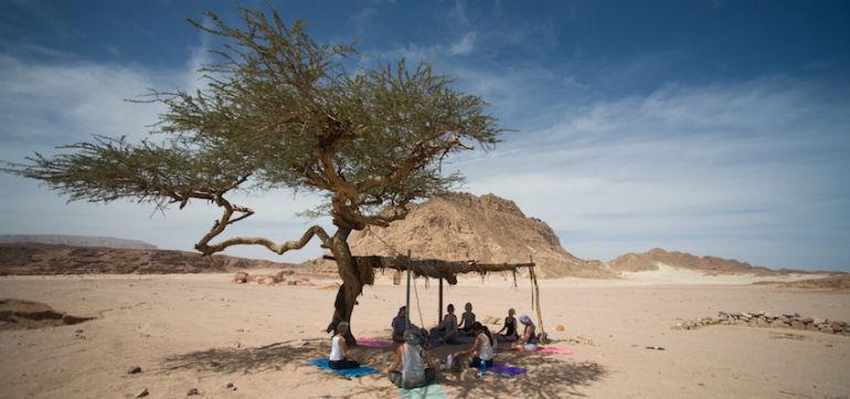 Yoga & Meditation In The Sinai Desert (Gorgeous Photos) Hero Image