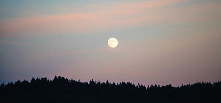 7 Manifestation Tips For Tonight's Vibrant Full Moon In Virgo Hero Image