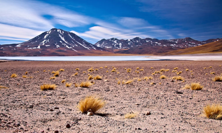 You Have To See What Happened To This Chilean Desert After A Historic Rainfall Hero Image