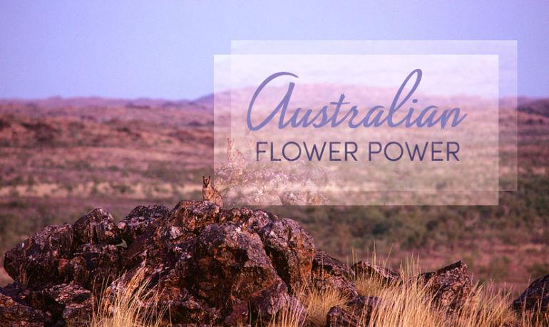 Flower Power: The Natural Magic Of Australian Botanical Essences Hero Image