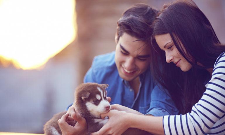 5 Ways Having A Pet Can Make You Better At Life Hero Image