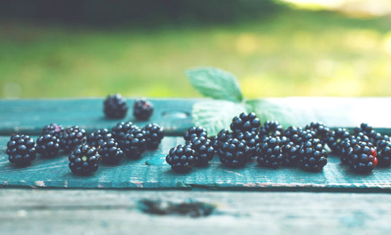The 6 Cancer-Fighting Superfoods You Should Eat Every Day Hero Image