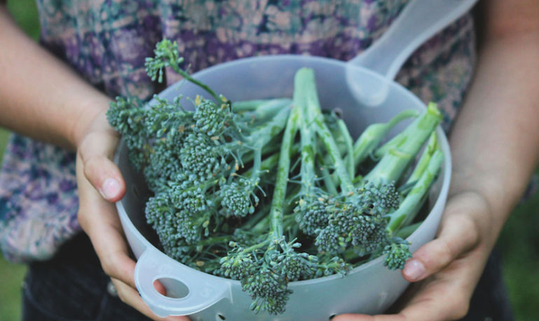 5 Foods That Lower Inflammation + Fight Spring Allergies Hero Image