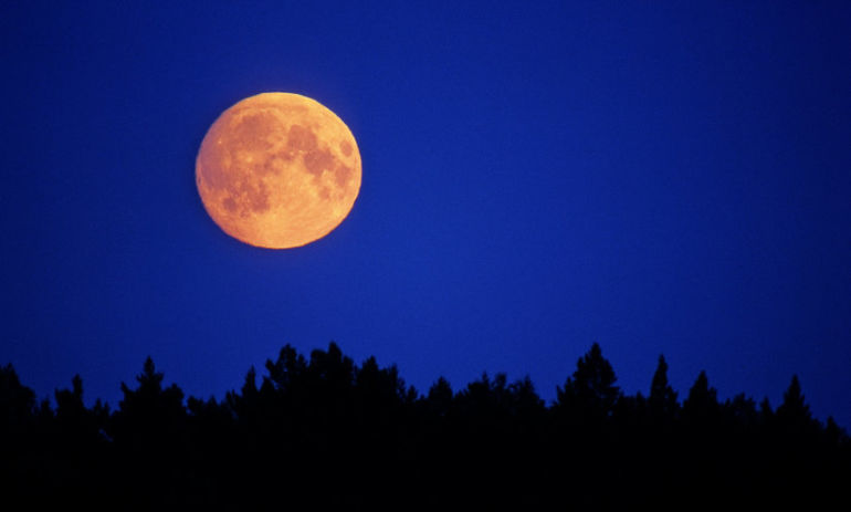 8 Ways To Harness The Power Of The Full Moon (And End The Year On Your Terms) Hero Image