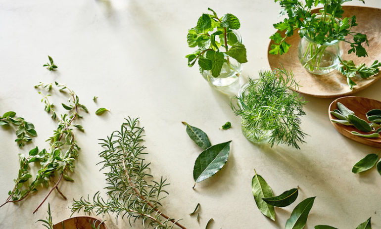 7 Healing Herbs You Need In Your Kitchen (But Haven't Heard Of Yet) Hero Image