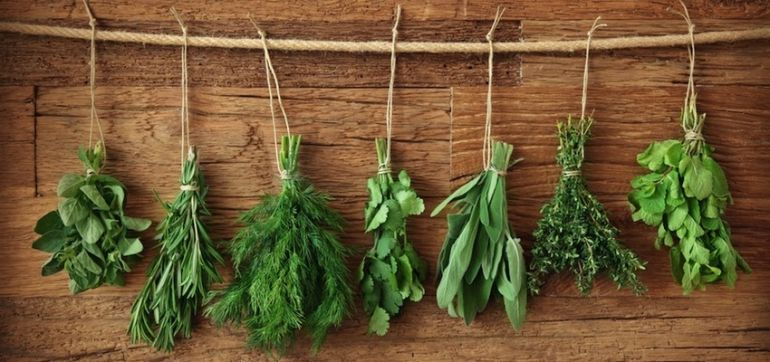 5 Herbs & Spices That Belong In Every Home Hero Image