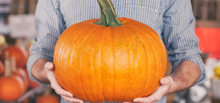Did You Know You Can Juice A Pumpkin? And Other Fun Facts Hero Image