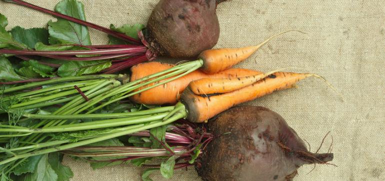 Veggie Showdown: Beets Vs. Carrots Hero Image
