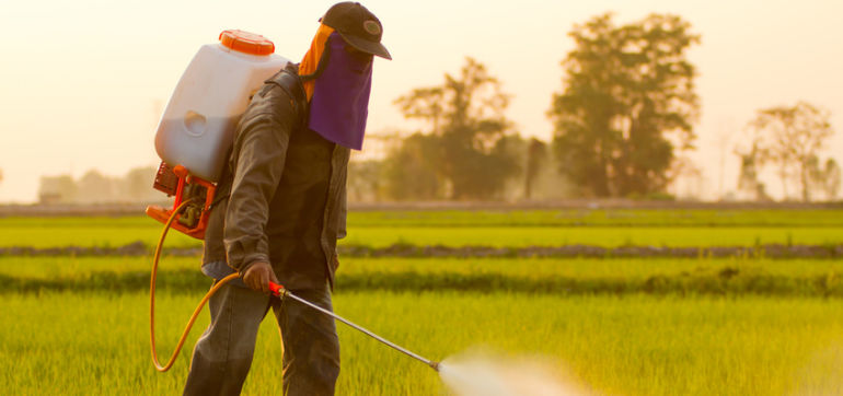 EPA Approves Dangerous Weedkiller Designed For New GMOs Hero Image