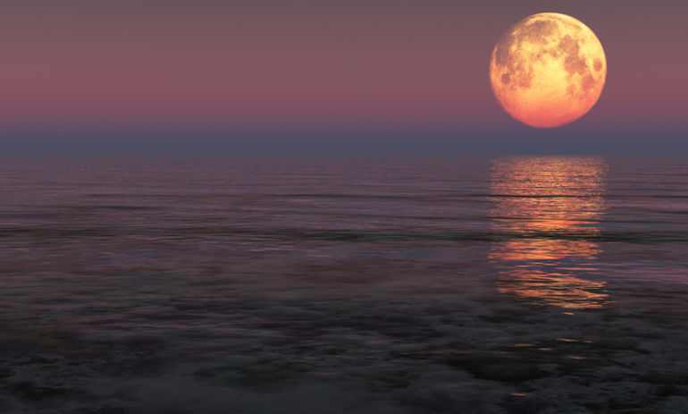9 Energizing Rituals To Activate The Power Of The Leo Full Moon Hero Image