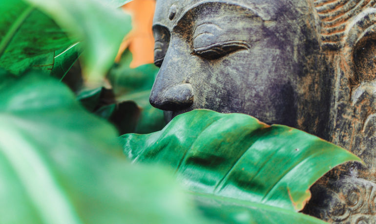 How Buddhism Can Lead To A More Balanced Life: A Psychologist Explains Hero Image